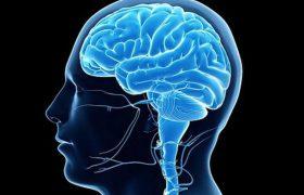 Три тренировки в неделю омолодят мозг на 10 лет