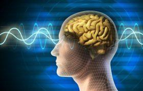В лечении болезни Альцгеймера может помочь ультразвук