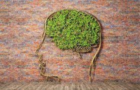 Это не Альцгеймер: другие причины нарушения памяти