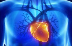 Открыт способ минимизировать последствия инсульта и инфаркта