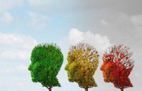Найден способ вернуть память при старческом слабоумии