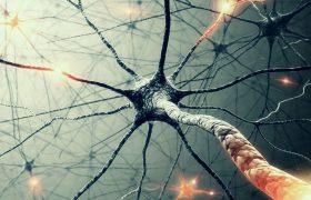 Потерю слуха компенсируют мозговые клетки