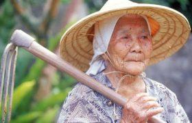 8 факторов, которые помогают избежать деменции