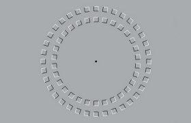 Оптическая иллюзия вызывает «зависание мозга»