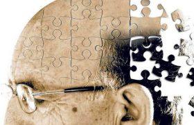 К болезни Альцгеймера ведут 3 причины