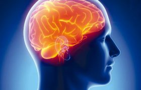 Эксперты назвали причины преждевременного старения мозга