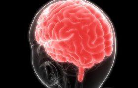 Терапия светом и звуком может замедлить болезнь Альцгеймера