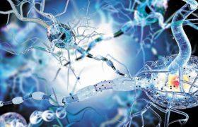 Клетки мозга при рассеянном склерозе стареют быстрее