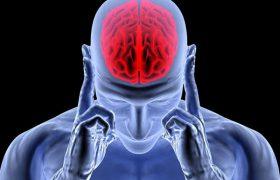Обнаружен белковый комплекс NAC, действующий как средство от болезней мозга
