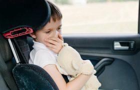 Почему нас укачивает в машине: наш мозг считает, что нас отравили