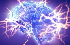 Электрические разряды в мозг помогут улучшить память