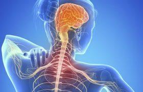 Рассеянный склероз: первые признаки, лечение и профилактика