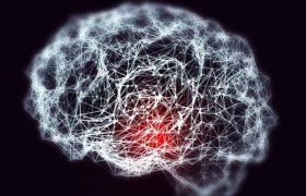 Учёные собираются лечить старческое слабоумие светом