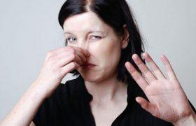 Отталкивающие запахи способны улучшить качество памяти