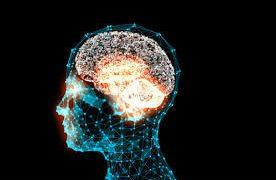 Нейробиологи нашли способ улучшить человеческую память