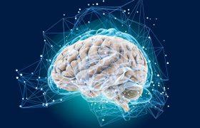 Трюки, которые ускорят работу мозга