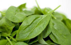 Названы белковые продукты, снижающие риск инсульта