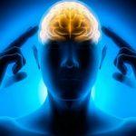 Диетолог Людмила Денисенко назвала лучшие продукты для работы мозга