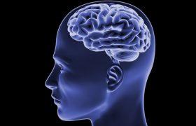 Алкоголь разрушает мозг долгое время после отказа от его употребления