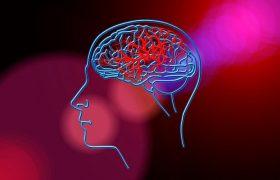 Исследование: алкоголь долго разрушает мозг даже после отказа от него