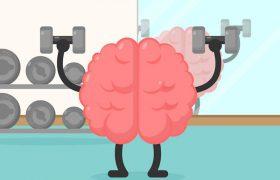 Фитнес для мозга: почему спорт лучше кроссвордов?