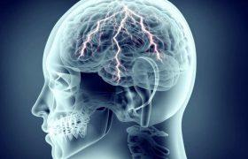 Чрезмерная тренировка вызывпает усталость мозга
