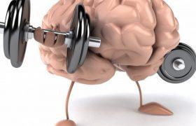 Медики назвали продукты, улучшающие работу мозга