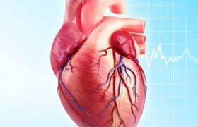 Ишемическая болезнь сердца и её симптомы