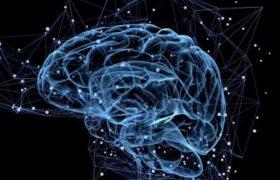 Нервозные движения могут стимулировать мозг для работы