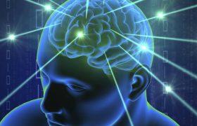 Эффект антидепрессантов предсказали по изменению связей в мозге