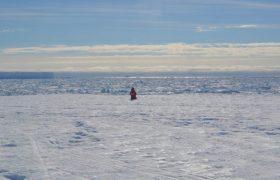 У антарктических исследователей усыхает мозг