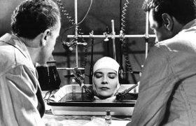 Что будет, если пересадить человеку голову? Отвечает трансплантолог Михаил Каабак