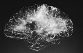 Жизнь без регулярного сна нарушает связи в мозге