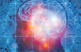 Новая модель поможет понять принципы работы мозга