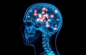 Как видео отравляет ваш мозг