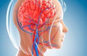 Исследование: сжатие рук и ног улучшает регуляцию мозгового кровотока