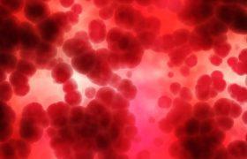 Группа крови может говорить о риске болезней сердца и сосудов
