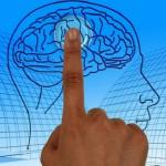 Ученые назвали способ притормозить старение мозга