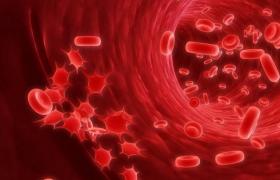 Как высокое кровяное давление может погубить мозг