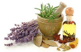 Лучшие травы и специи против гипертонии