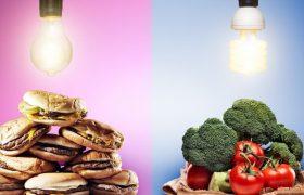 Западная диета ухудшает работу мозга — исследование