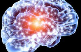 Мозг убивает человека с помощью вредного сахара