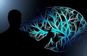 Стали известны 8 ежедневных привычек, ведущих к раннему старению мозга