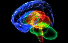 Вещи, отрицательно влияющие на работу мозга