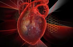 Названы продукты против инфарктов и инсультов