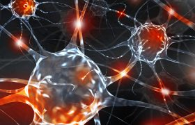 Раскрыта тайна болезней, превращающих мозг в губку