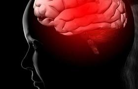 Забота о здоровье сердца может защитить мозг от возрастных изменений