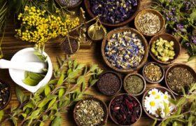 5 целебных трав для очищения сосудов и улучшения сердечного ритма