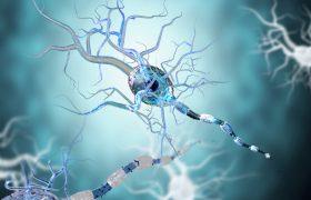 Названа мелодия, снижающая частоту приступов эпилепсии