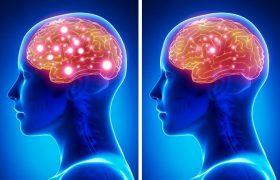 6 вещей, которые разрушают мозг